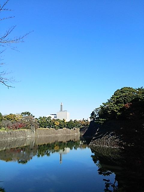 秋季皇居乾通り一般公開